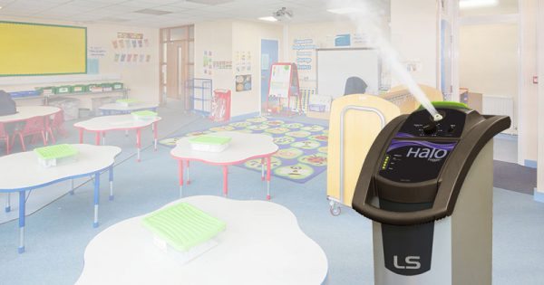 halo classroom email